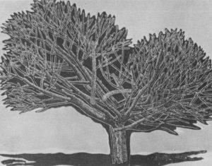 Δέντρο, 1977, λινόλεουμ, 50,5 x 68 εκ.